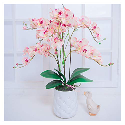 Binfen Artificial Orchid Silk Flower with Decorative Ceramic Square Vase Vivid Potted Phalaenopsis Plant Indoor or Outdoor Wedding Party Home Centerpiece Décor, Pink