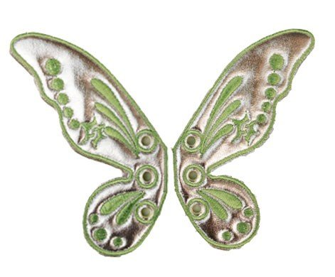 Fairy Wing Shoe Shwings -