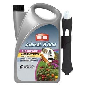 ortho-animal-b-gon-all-purpose-animal-repellent-ready-to-use-spray-1-gallon-squirrel-groundhog-rabbi
