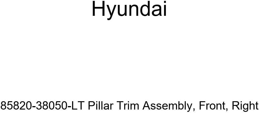 Front Genuine Hyundai 85820-38050-LT Pillar Trim Assembly Right