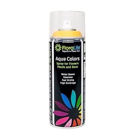 400 ml Oasis con base de agua Floralife® Aqua Color Spray de ...