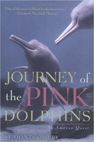 Journey of the Pink Dolphins An  Quest