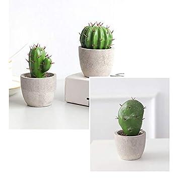 iTemer 1 Unidades de simulaci/ón Creativa Resina Cactus decoraci/ón del hogar Adornos Planta Verde Bonsai decoraci/ón del hogar 11.1cm*6.2cm Estilo-1