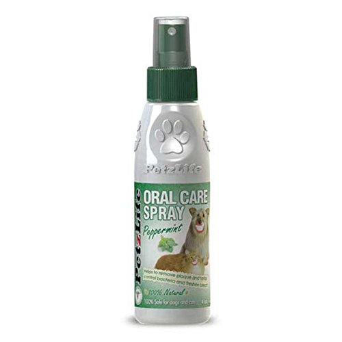 PetzLife Peppermint Oral Spray 4 Ounce product image