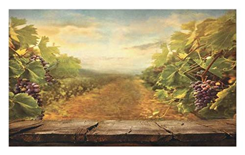 Grapes Non Skid - Lunarable Vineyard Doormat, Vineyard Ripe Grapes Natural Rustic Country Landscape Scenery Orchads Wine, Decorative Polyester Floor Mat with Non-Skid Backing, 30