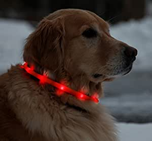 Flashing Collars Band For Dogs