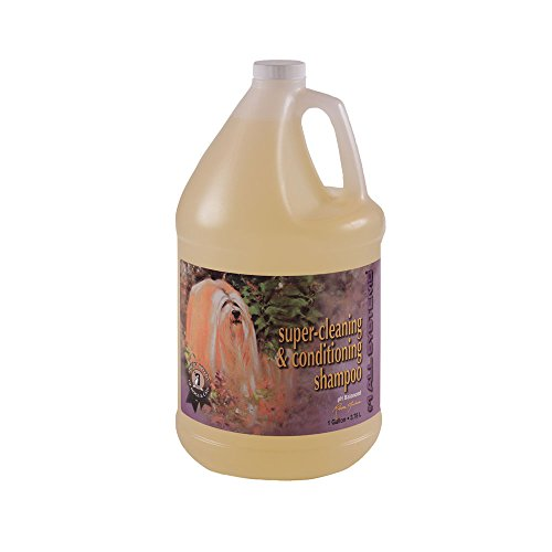 Super Cleaning and Conditioning pH Balanced Shampoo (Gallon) - 1 All Systems