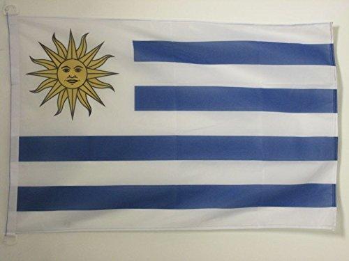 AZ FLAG BANDERA de URUGUAY 90x60cm Uso Exterior - BANDERA URUGUAYA 60 x 90 cm anillos: Amazon.es: Hogar