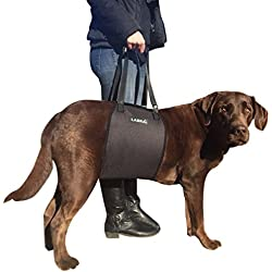 Labra Veterinarian Approved Dog Canine K9 Sling Lift Adjustable Straps Support Harness Helps with Loss of Stability Caused by Joint Injuries and Arthritis ACL Rehabilitation Rehab