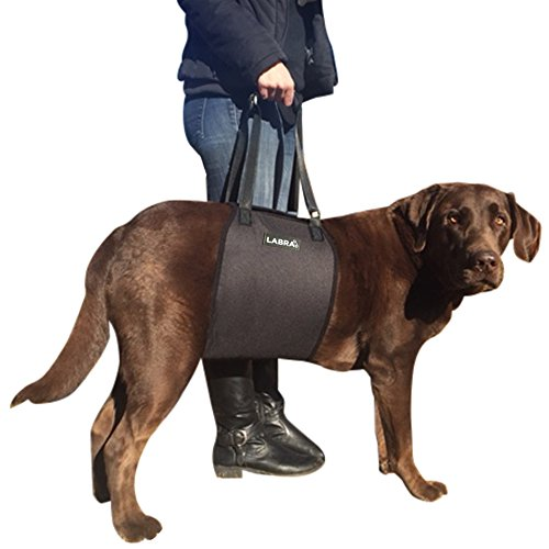 Labra Veterinarian Approved Dog Canine K9 Sling Lift