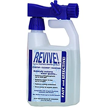 Revive Swimming Pool Phosphate And Algae Remover Chemical For Pools 32 Oz