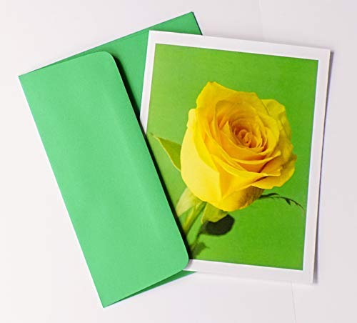 (Rosebud Note Cards Original Elegant Photographic Smooth/Matte White Blank 4.25