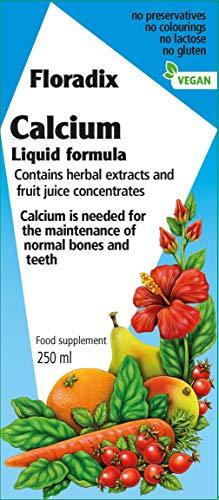 - Floradix Calcium Liquid Mineral Supplement 250ml