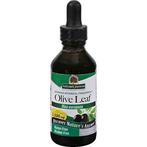 Natures Answer OleoPein Olive Leaf Alcohol Free - Gluten Free - 2 fl oz (Pack of 2)