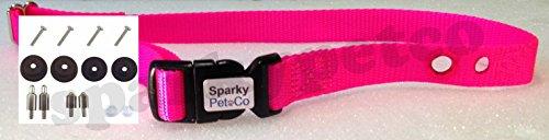PetSafe RFA 529 Accessory Kit & 3/4