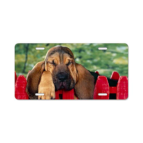 Animal Bloodhound Dogs Sleeping Puppy Dog Metal License Plate Frame Car Vehicle Decor