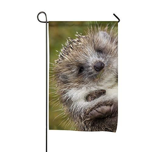 WilBstrn Cute Little Hedgehog Garden Flag Holiday Spring Sum