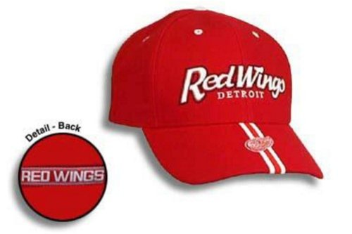 (Eclipse Men, Women Red Wings Panic Black One Size Fits Most)