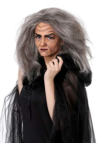 Fun Costumes Witch/Old Lady Wig Standard ()
