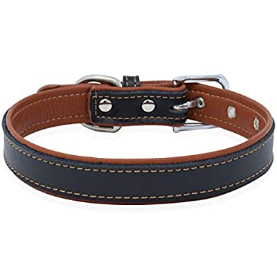 Epic Rogue Leather Dog Collar and Cat Collar, Soft Padded Genuine Leather Pet Collar for Female Male Cats Puppy and Small Medium Large Dogs