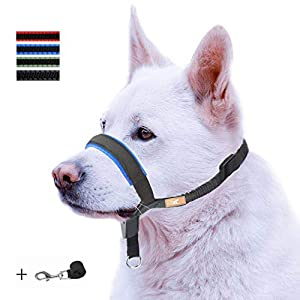 Dog Head Collar with Padded Leather, Head Harness Stops Dog Pulling, Head Leash