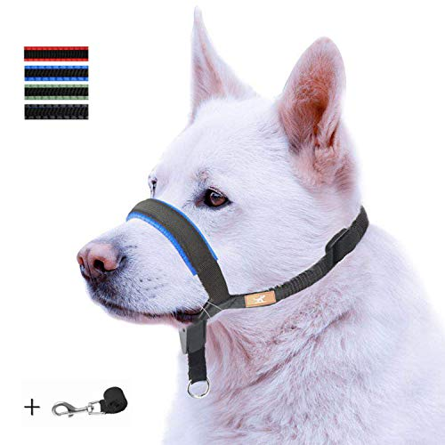 - Dog Head Collar with Padded Leather, Head Harness Stops Dog Pulling, Head Leash (M, Blue)