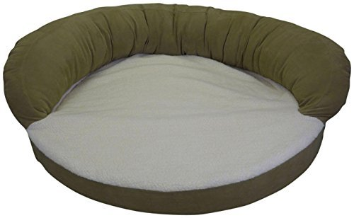 Ortho Sleeper Bolster - CPC Ortho 50-Inch Sleeper Bolster Bed, Sage by Cpc