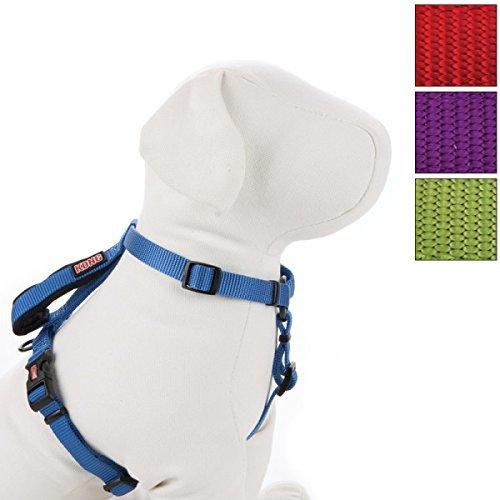 kong pet harness - 3
