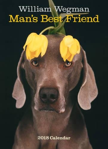 William Wegman Man's Best Friend 2018 Wall Calendar
