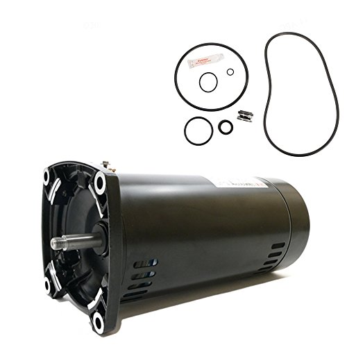 Sta-Rite Max-E-Pro 1HP P6RA6E-205L Replacement Motor Kit AO Smith USQ1102 w/GO-KIT-79