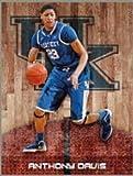 FATHEAD Anthony Davis Kentucky Wildcats Official NCAA Vinyl Wall Graphic 21''x16'' INCH