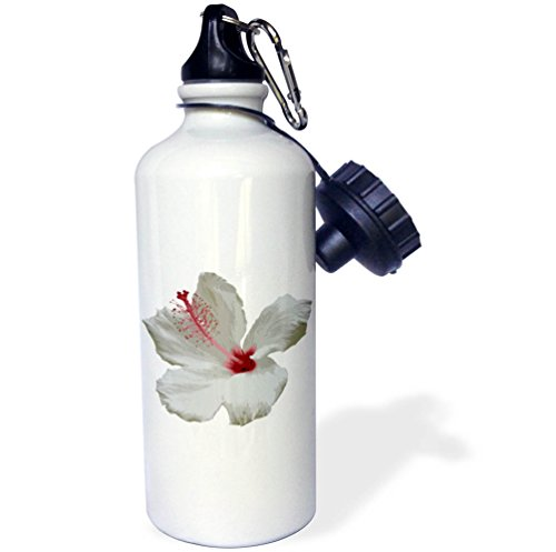 3dRose Taiche - Photography - Hibiscus - Pure White Hibiscus Tropical Flower - 21 oz Sports Water Bottle (wb_273642_1) by 3dRose