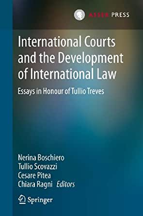 international courts essay The international criminal court reparations to in the interest of equity, efficiency and effectiveness of the future international criminal court, the papers.