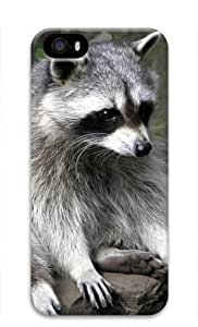 Baby Raccoon 011 Iphone 5 5S Hard Protective 3D Cover Case by Lilyshouse by ruishername