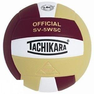 Tachikara インドア 合成 バレーボール B003ZY8Z8W パープル