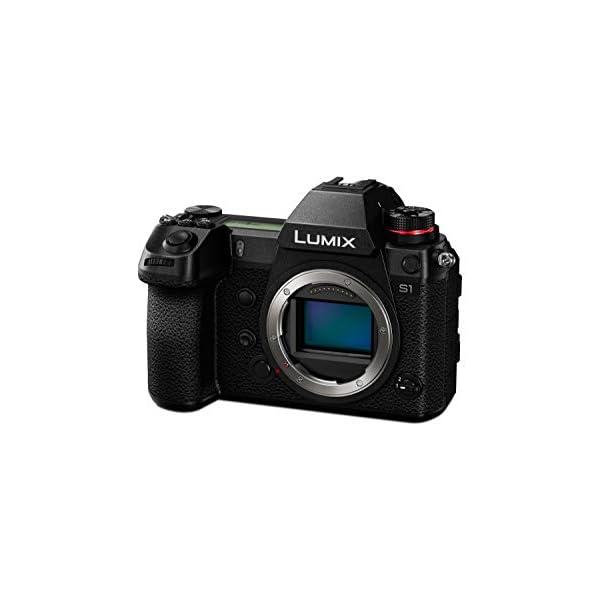 RetinaPix Panasonic Lumix S DC-S1 Full Frame Mirrorless Camera
