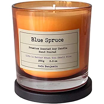 CoCo Benjamin (Blue Spruce) Soy Candle, 8.8 oz, Highly Scented, Hand Poured