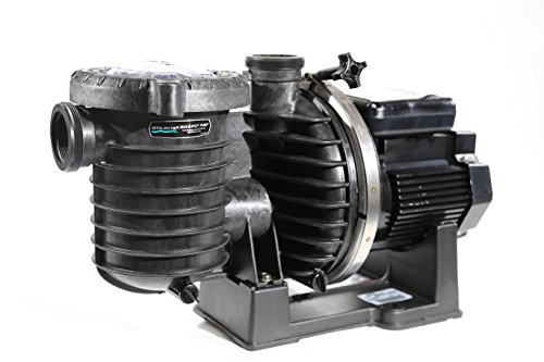 Sta-Rite 345076 Max-E-Pro High-Efficiency TEFC Super-Duty Pool/Spa Pump, 1 Horsepower, 208-230/460 Volt, 3 Phase by Pentair