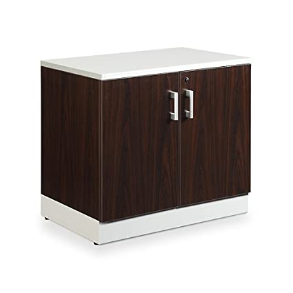 Popular Two Door Storage Cabinet Interior