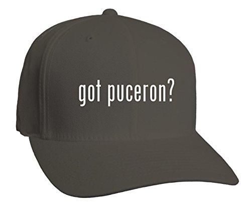 got-puceron-adult-baseball-hat-dark-grey-small-medium