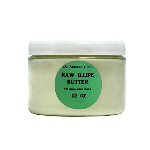 RAW Illipe Butter Organic 100% Pure 12 Oz