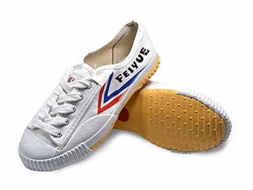 FeiYue Kungfu Martial Arts Taichi Trainer Shoes For Men and Women