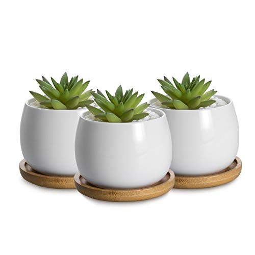 - UFIG Set of 3 Egg Shaped Tiny White Ceramic Succulent Cactus Plant Pots Mini 2.4
