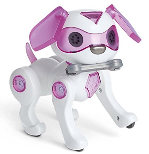 American Girl 2018 Luciana's Robotic Dog