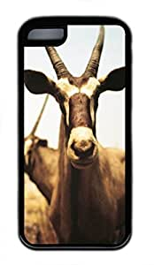 iPhone 5c case, Cute Herbivorous Animals iPhone 5c Cover, iPhone 5c Cases, Soft Black iPhone 5c Covers