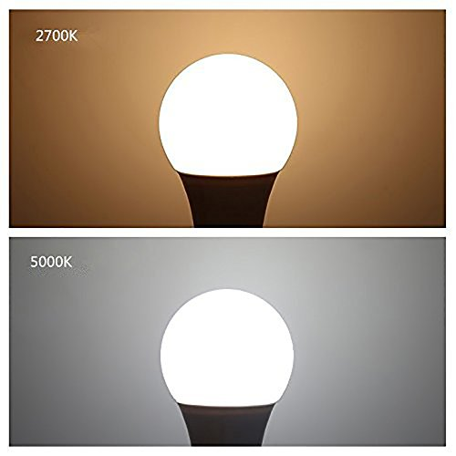 SHANHAI A19 E26 Medium Base LED Light Bulbs for Home, Office & Market - 100 watt equivalent (11W), Energy Saving, Soft White (2700K),CRI80+, 1100lm, General Purpose Light Bulb,UL Listed , Pack of 6