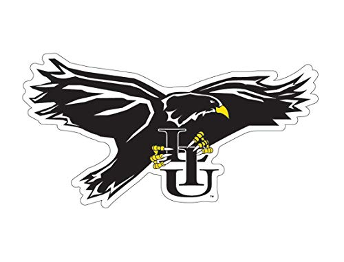 Long Island University LIU Brooklyn Blackbirds Auto Badge Decal, Hard Thin Plastic, Small 3.25 x 1.5 inches ()