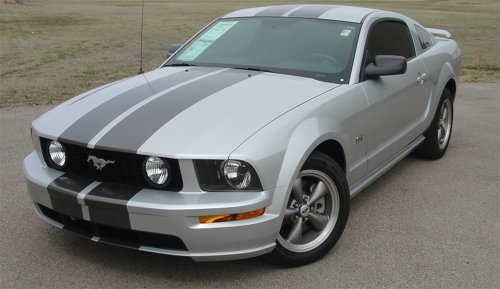 Mustang Lemans Stripe - WILDSTANG S-500 : 2005-2009 Ford Mustang