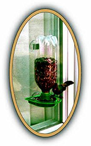 Gadjit Soda Bottle Wild Bird Window Feeder Kit (Green) – Suctions to Outdoor Windows Brings Birds Right Up Close, Just Add Bird Seed, Feed Wild Birds Promotes Plastic Bottle Re-use