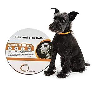 Hook.s. Collar antipulgas para Perros, antiparásito Impermeable para Mascotas Pulgas y garrapatas Repelente de garrapatas para Perros y Gatos, Aceite Esencial Natural